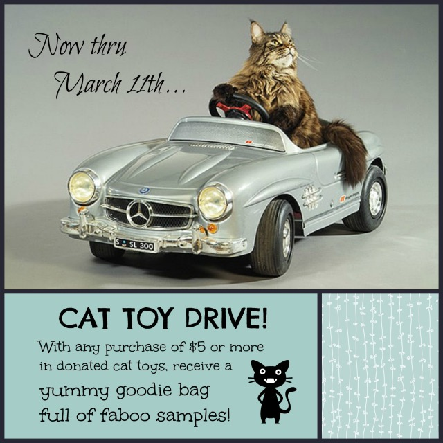 cat-toy-drive-0317