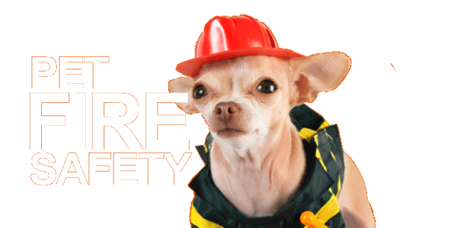 featured-fire-safety
